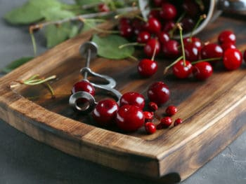Best Cherry Pitter