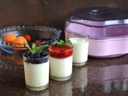 Best Greek Yogurt Makers