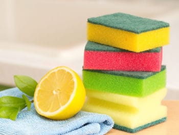 Best Kitchen Sponge