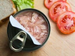 Best Canned Tuna