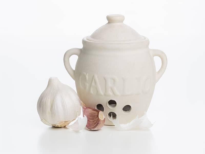 Joie Garlic Keeper