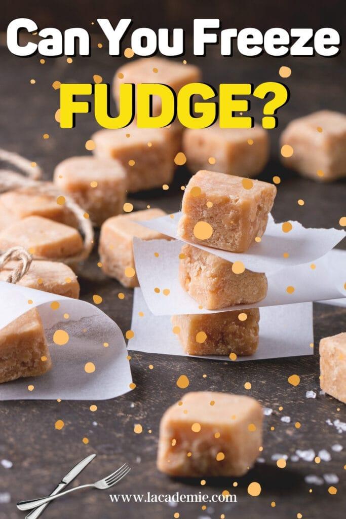 Freeze Fudge