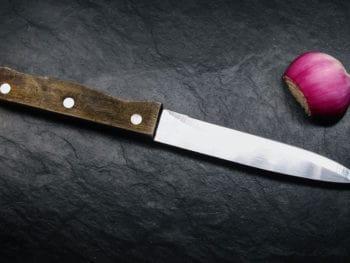 Kitchen Utility Knife