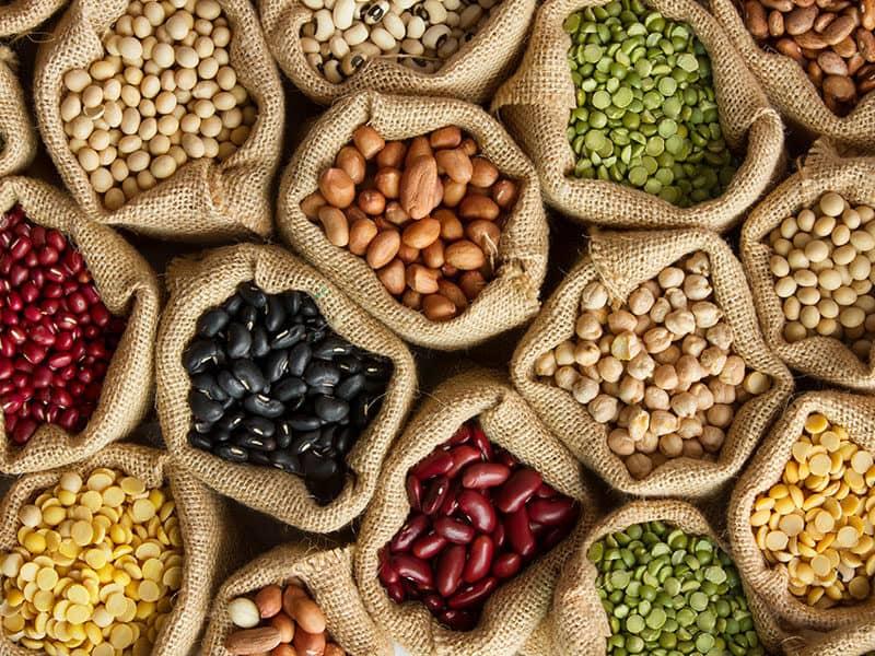 Legumes Bean