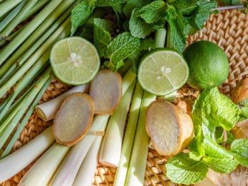 Lemongrass Ginger Mint