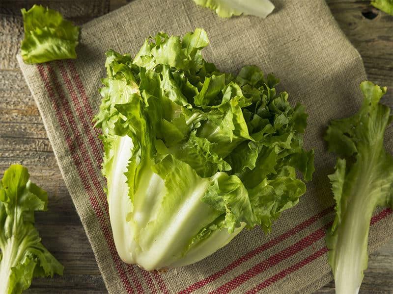 Raw Green Organic Escarole