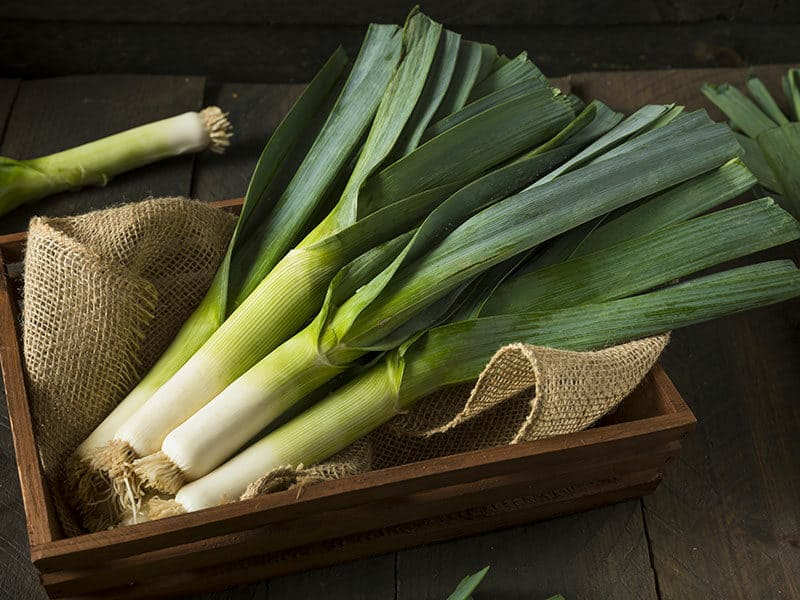 Raw Green Organic Leek