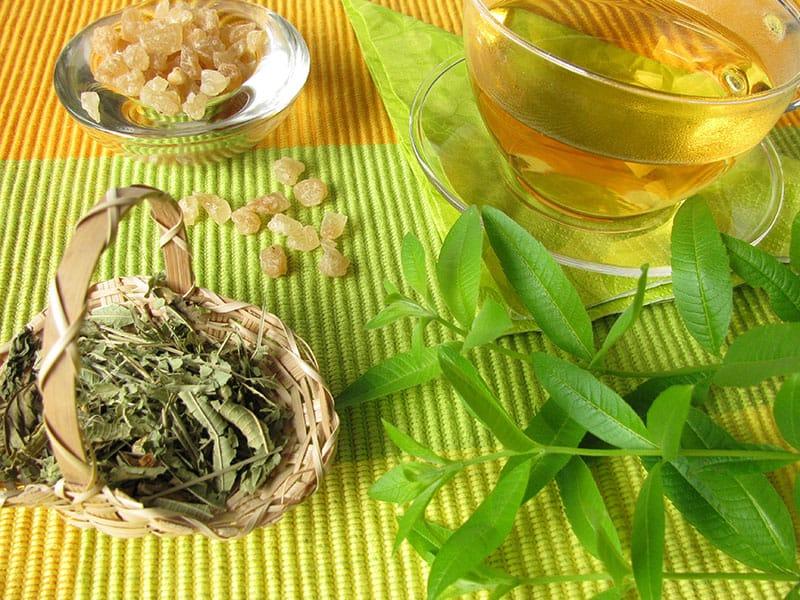Tea Lemon Verbena
