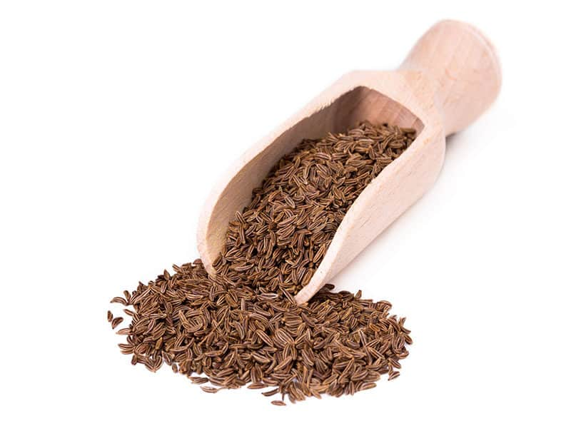 Caraway Seed Spice Shovel