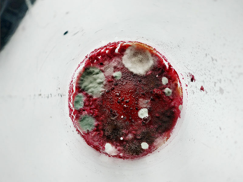 Cranberry Juice With Mold Appearance