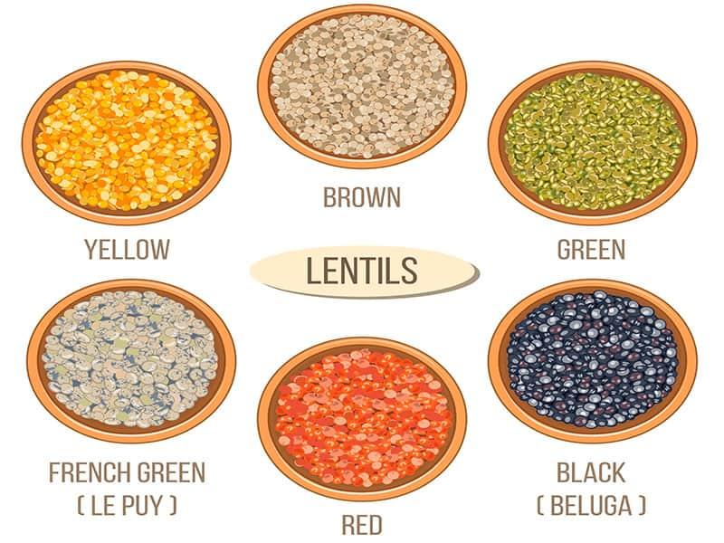 Different Types Lentils Ceramic