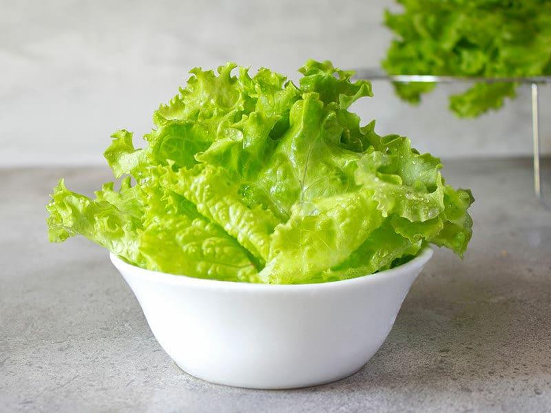 Dry Lettuce Leaves