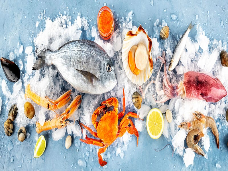Fish Seafood Overhead Panoramic