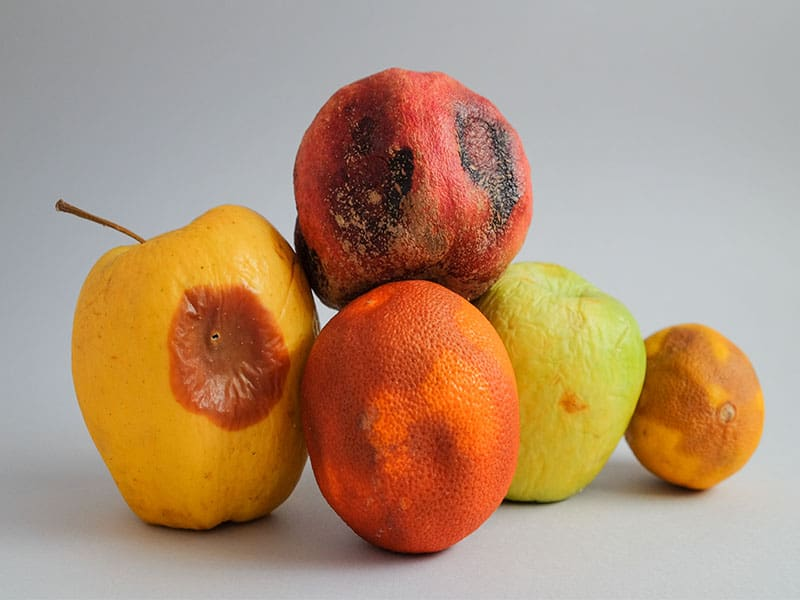 Fruits Ugly