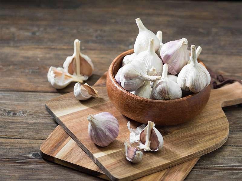 Garlic Powder Substitutes