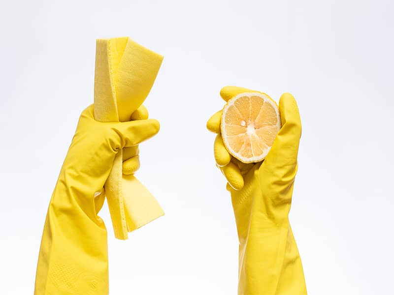 Gloves Cleaning Hold