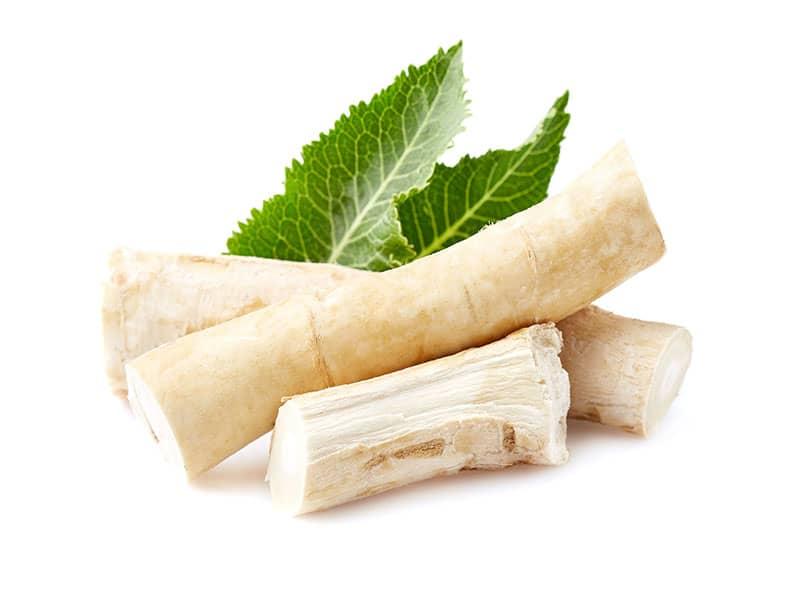 Horseradish Root Leaves