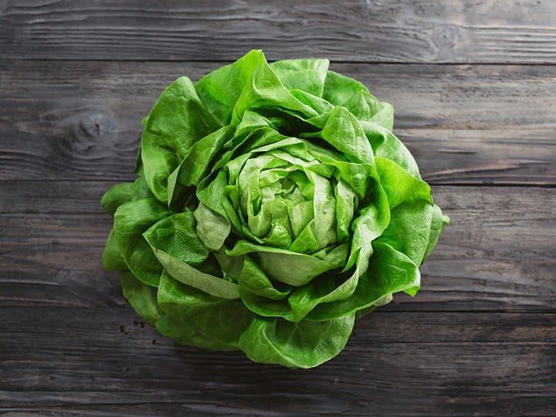 Keep the Lettuce Fresh