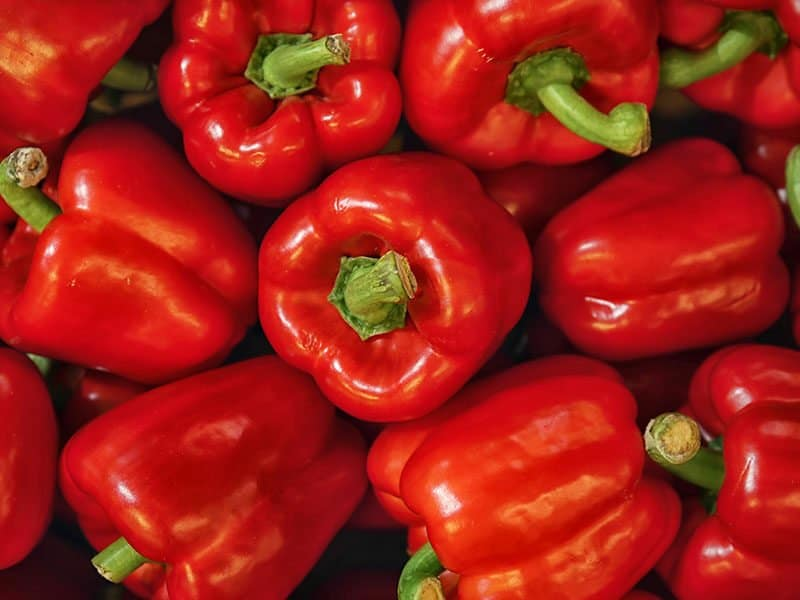 Pureed Red Peppers