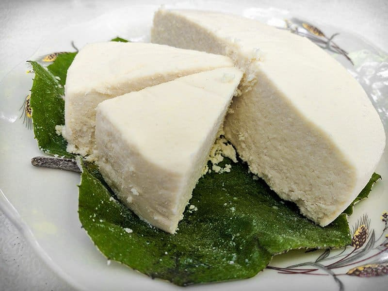 Queso Fresco Cheese Cows