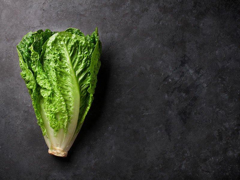 Romaine Lettuces