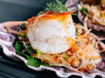 Serve With Scallops