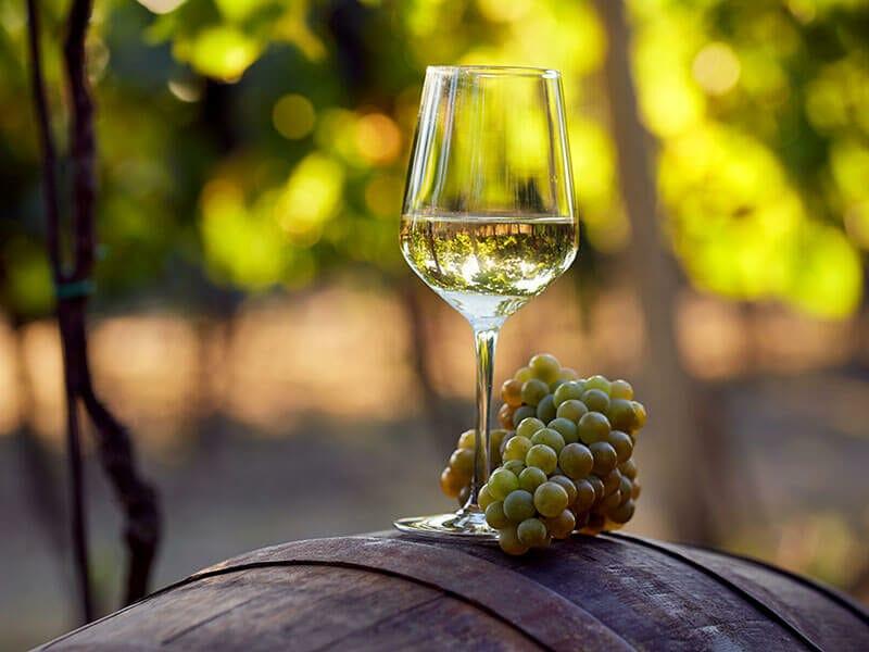 Chardonnay Over Fettuccine Alfredo