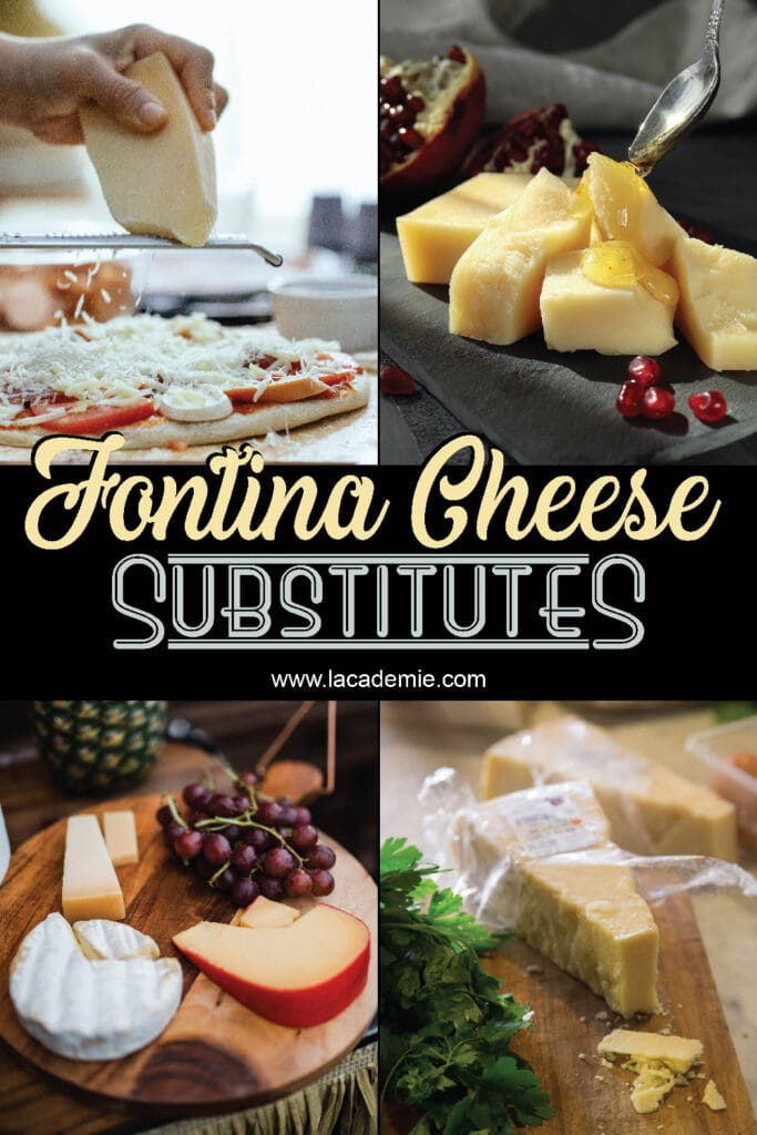 Fontina Cheese Substitutes