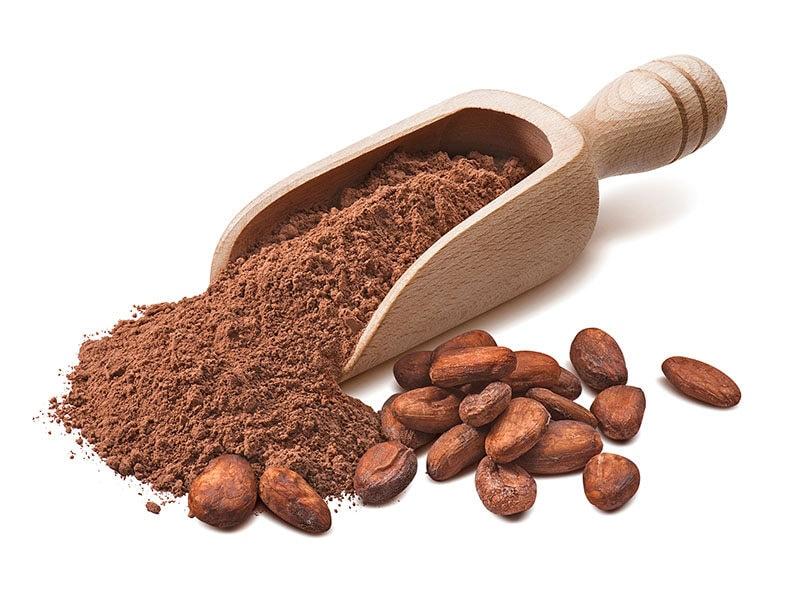 Scoop Crude Cocoa Powder
