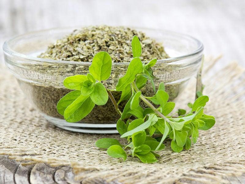 Dried Marjoram Herbs
