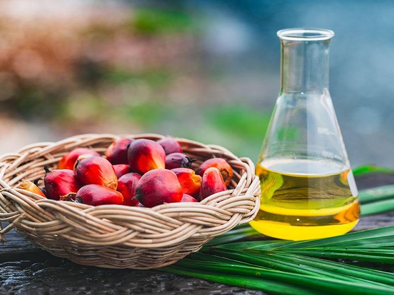 Basket Vegetable Oil
