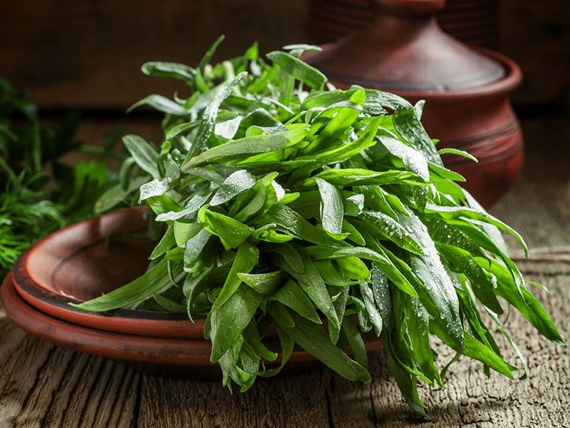 Fresh Green Tarragon