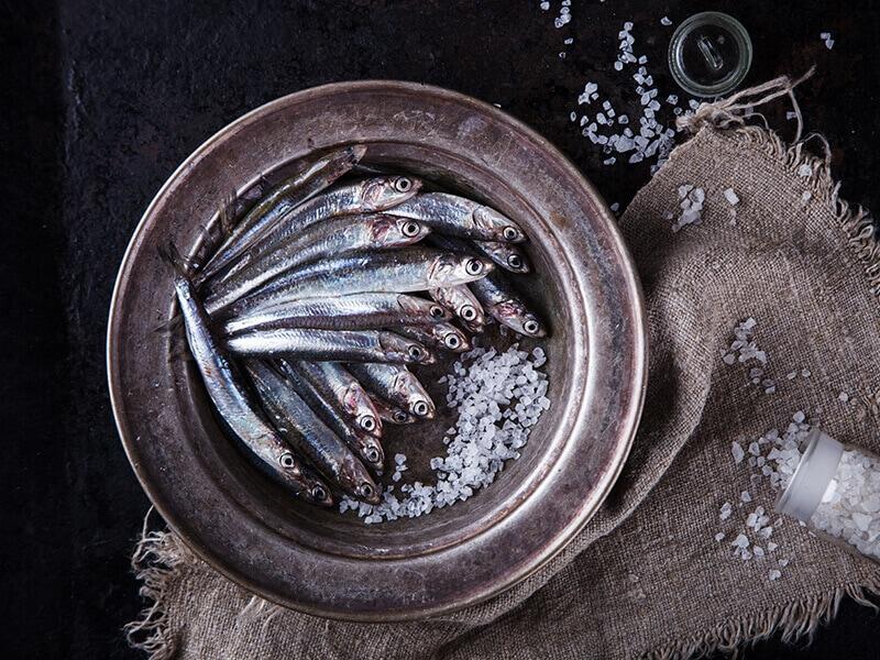 Anchovy Fresh Marine Fish