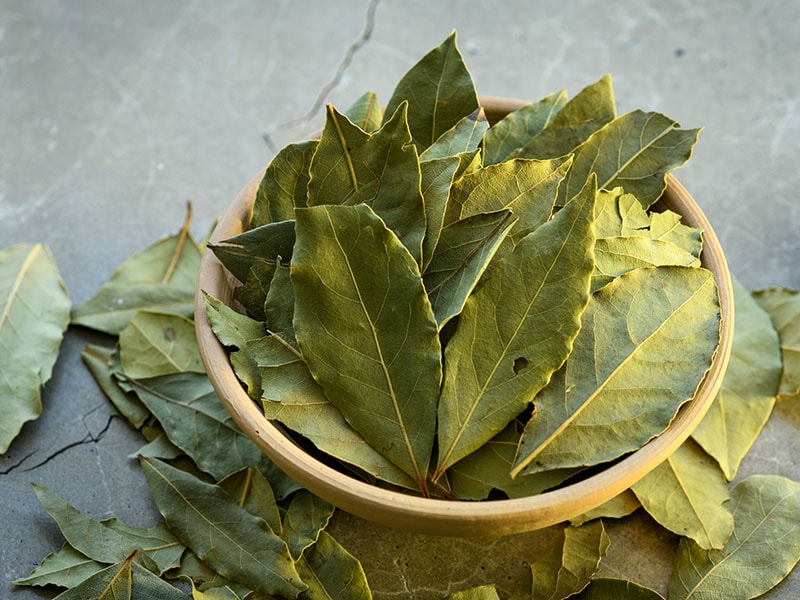 Bay Leaves Clay Dish
