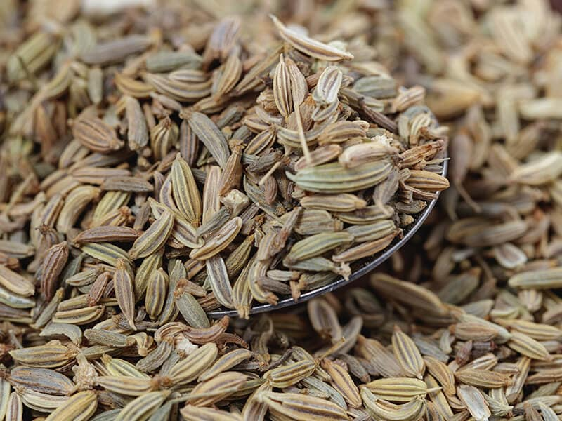 Fennel Seeds Spoon