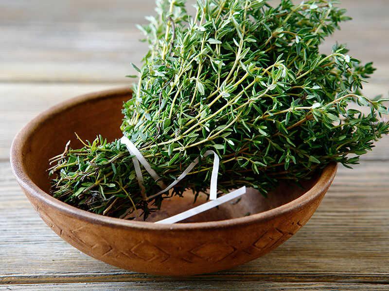 Green Thyme Bowl